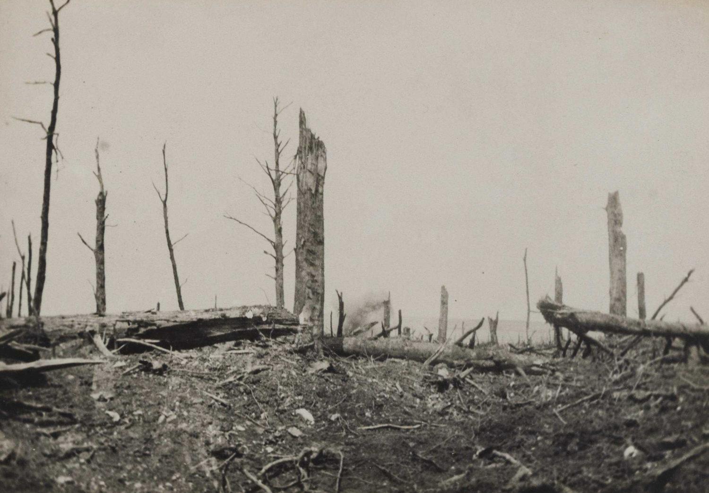 Le terrain bombardé dans les parages du fort de Vaux, 27 juillet 1916. La Contemporaine: VAL 198/145.